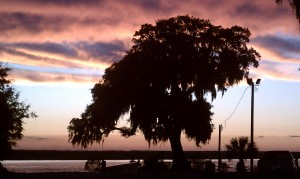 marshside mama's sunset