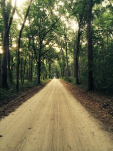 daufuskie dirt road